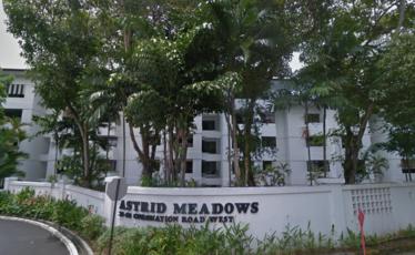 Astrid Meadows