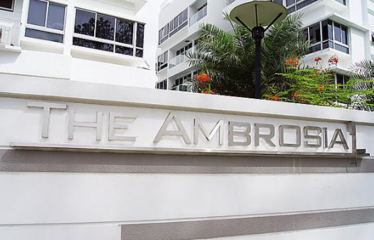 The Ambrosia