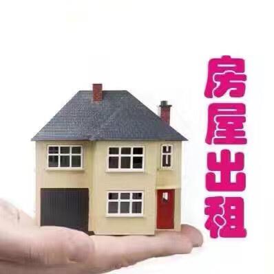 jinming 金明 Niiil 83963999